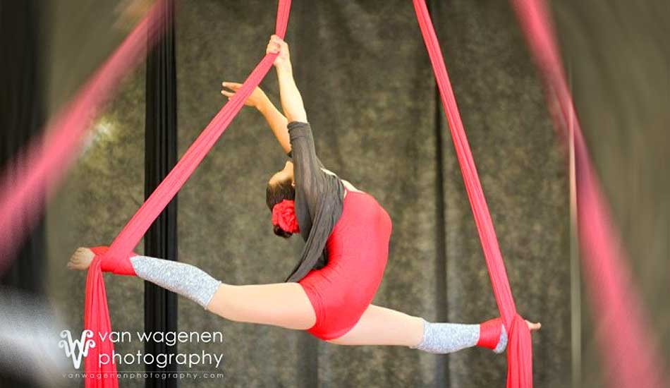 Aerial Silk and Aerialist Performers